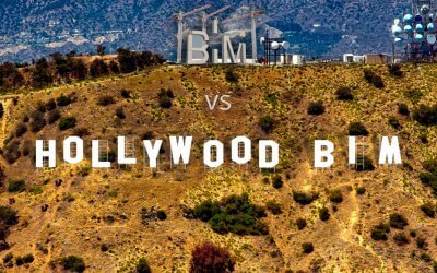 "BIM​ vs ""Hollywood BIM""​"